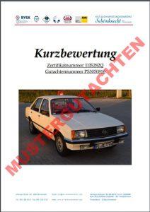 classic data kurzbewertung pdf download